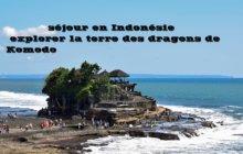 Un séjour en Indonésie : explorer la terre des dragons de Komodo