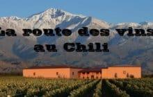 La route des vins au chili