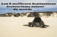 Les 5 des meilleures destinations écotourisme autour du Monde