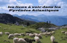Les lieux à voir dans les Pyrénées Atlantiques