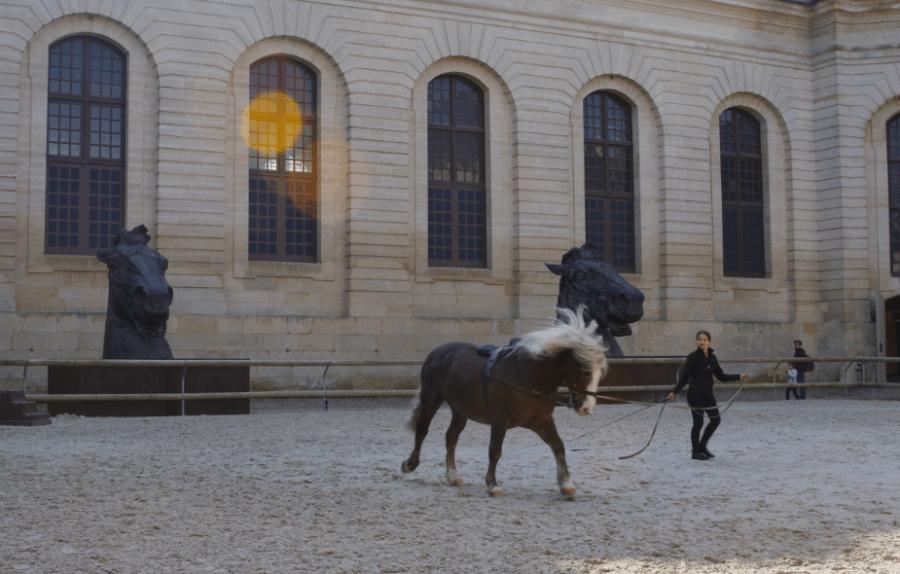 Les grandes écuries de Chantilly